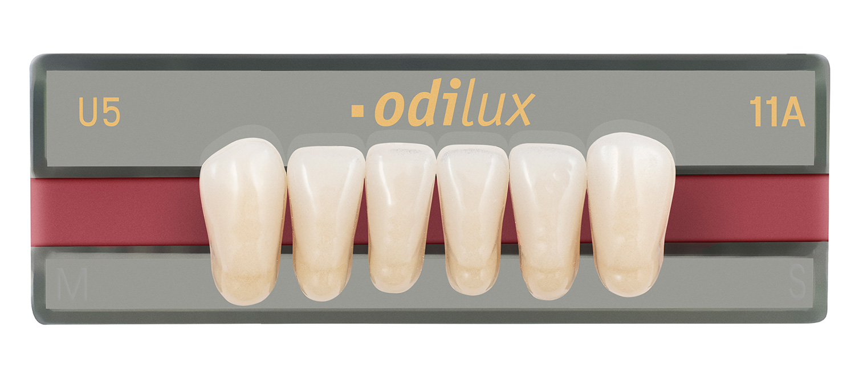 dientes artificiales odilux