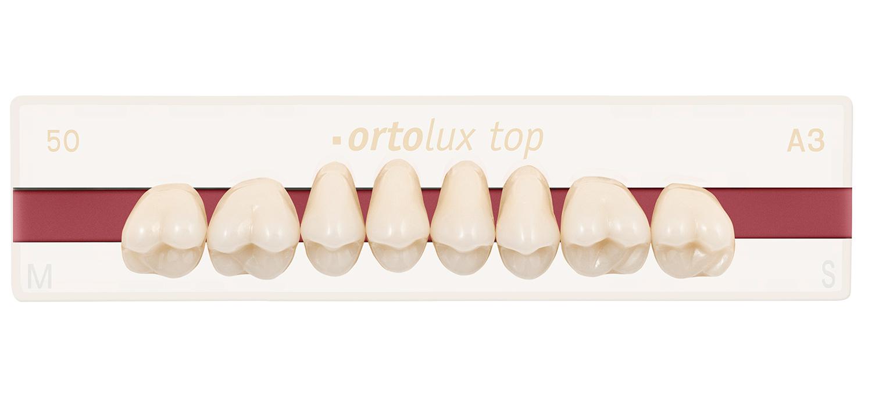 dientes ortolux top
