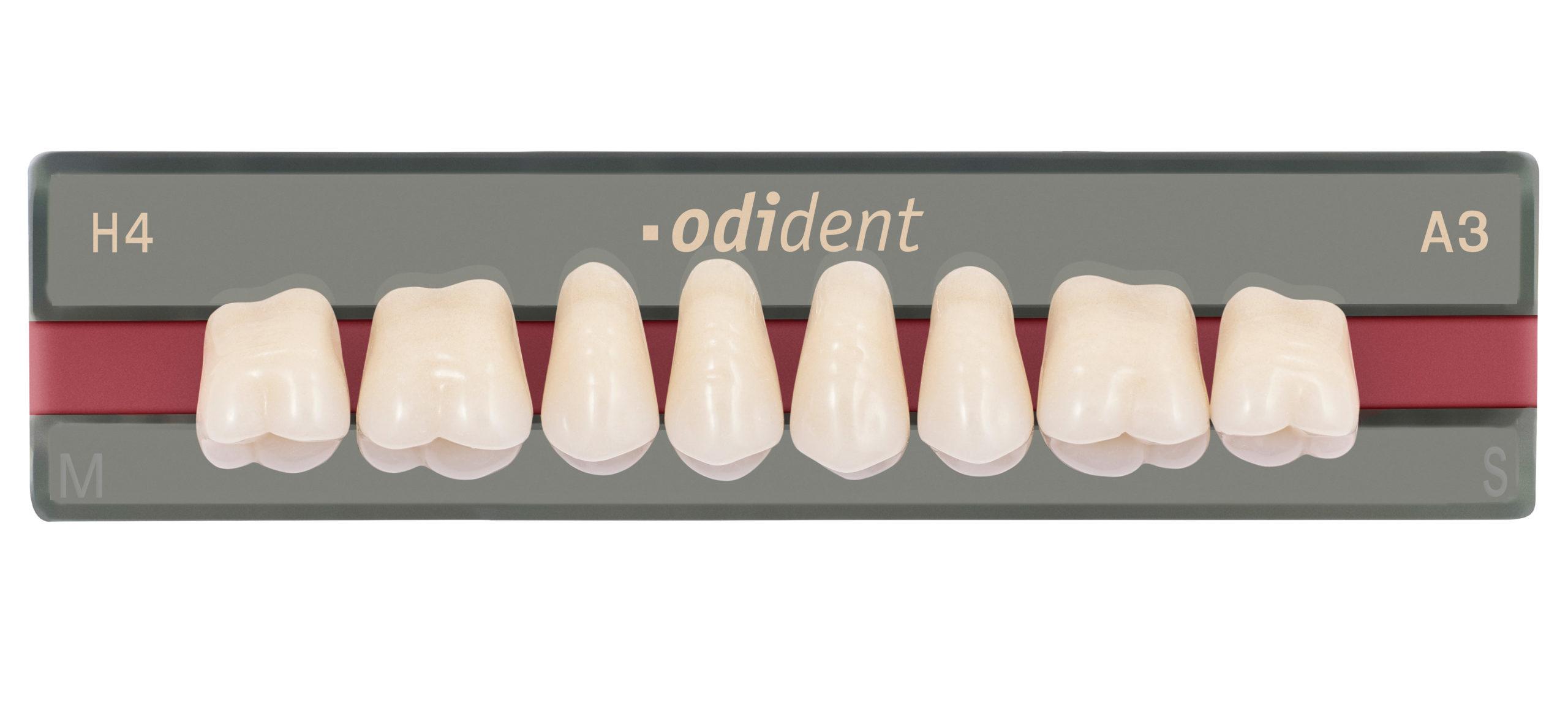 unidesa dientes odident